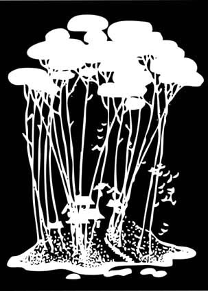 黑白装饰画-005